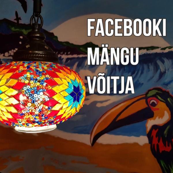 Facebooki mängu võitja